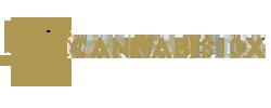 cannabis10x franchising logo
