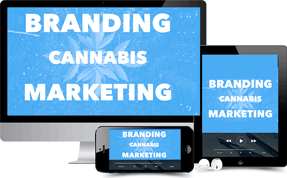 cannabis franchise branding marketing