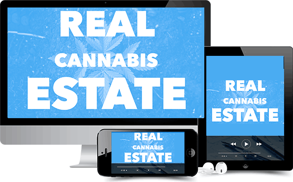 cannabis franchise real estate