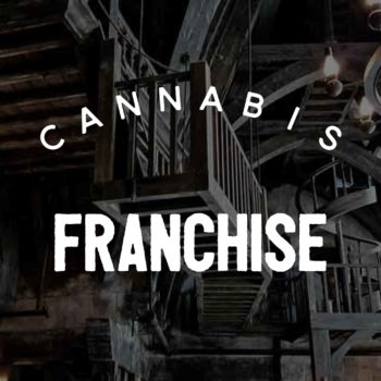 cannabis franchise