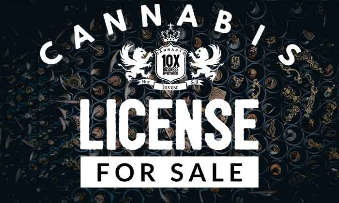 Cannabis license for sale